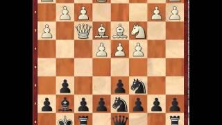 Шахматы  Староиндийская защита