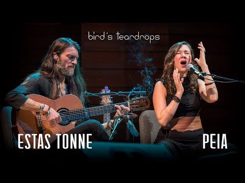 bird's-teardrops---peia-luzzi,-estas-tonne---ashland,-oregon-2018