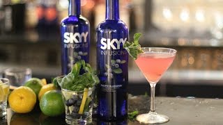 Skyy Infusions Pacific Blueberry - Blueberry Basil Spritzer - Skyy Vodka
