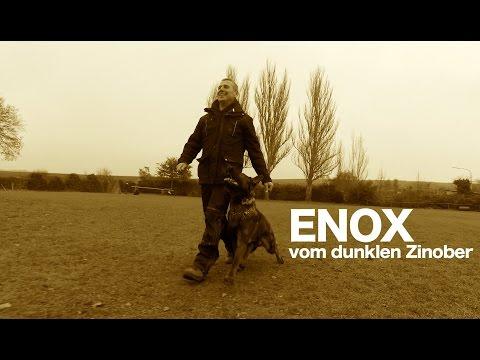 Enox vom dunklen Zinober - short obedience