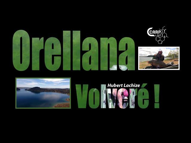 Orellana Volvere | Joyau d'Extremadura de Hubert Lachize | CARP LSD TV