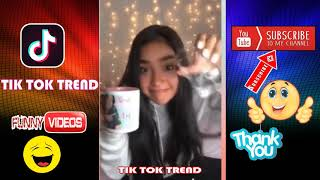 Top 20 TikTok Challenges Videos Best Funny in Year 2018 Musically Funny