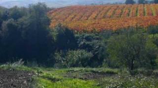 Land for Sale Torino di Sangro Abruzzo