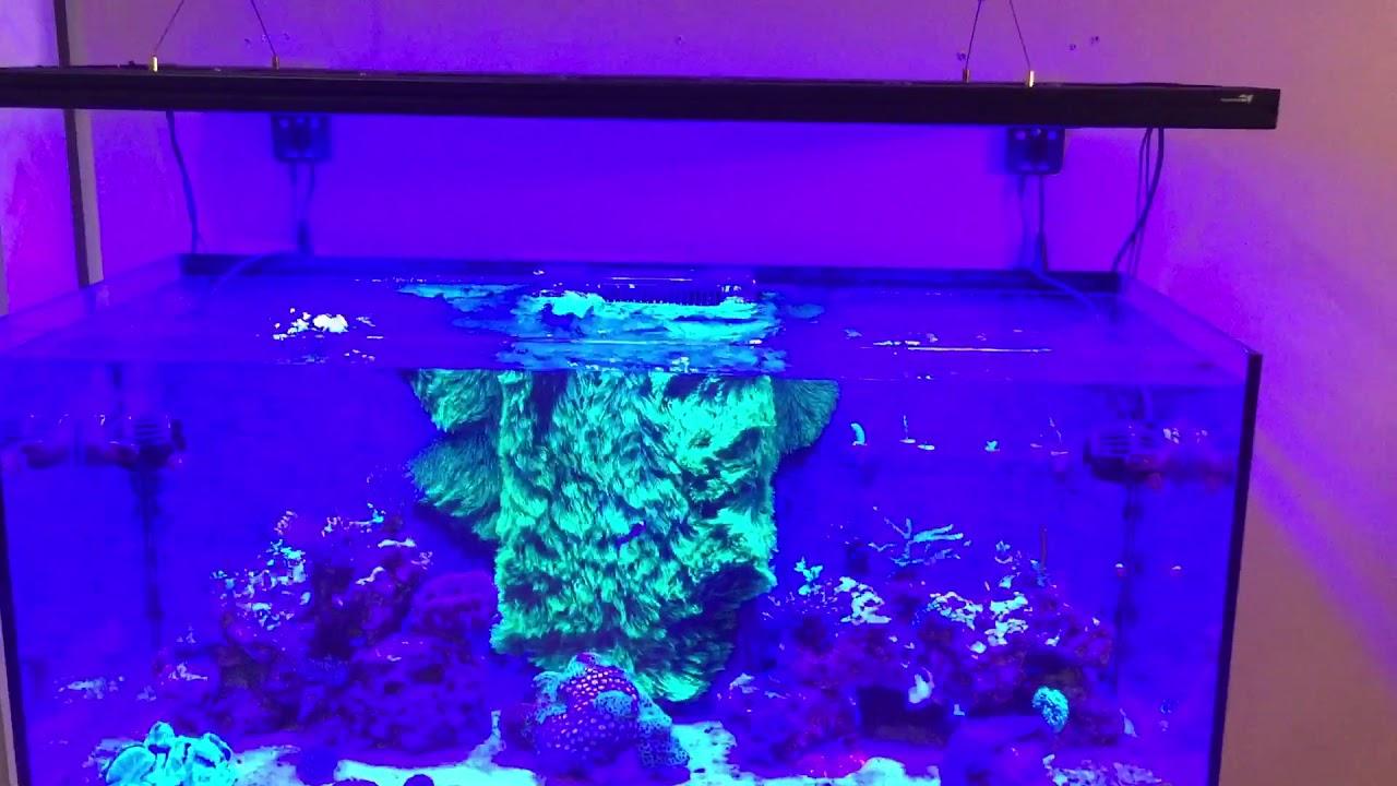 New Aquaticlife T5 Led Hybrid Light Fixture