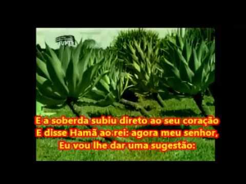 Fica Na Porta Eliã Oliveira (playback E Legendado)