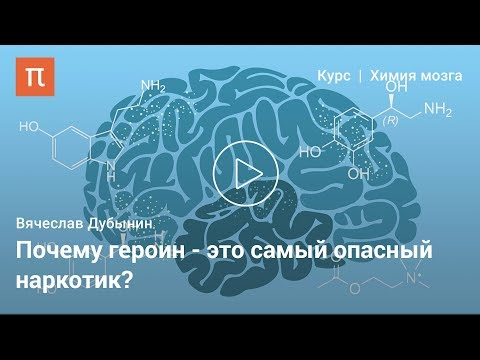 Эндорфины — Вячеслав Дубынин