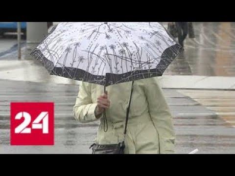 Порывистый ветер и дожди: в столице желтый уровень погодной опасности