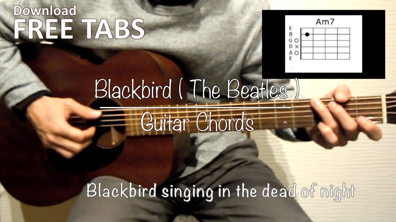 Blackbird The Beatles Guitar Chords Takashi Terada Youtube