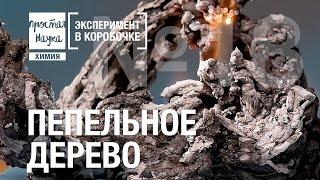 №18 - ПЕПЕЛЬНОЕ ДЕРЕВО