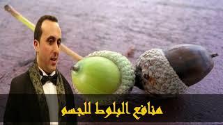 منافع البلوط للجسم أخصائي التغذية نبيل العياشي
