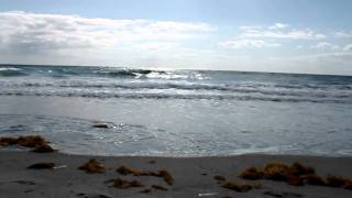Magic Island South Florida Surf & Beach Report 4-22-2011