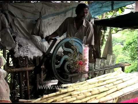 Sugarcane juice vendors from Bhubaneswar, Odisha