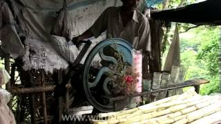 Sugarcane juice vendors from Bhubaneswar, Odisha