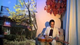 HOA VÀNG MẤY ĐỘ Trịnh Công Sơn Guitar Hawaii Acoustic CAODZAN 07DVD54