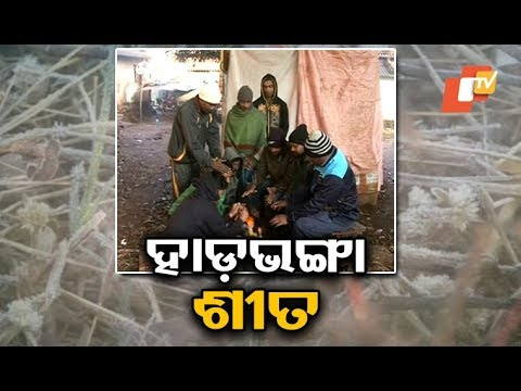 Odisha continues to shiver as cold wave sweeps several areas