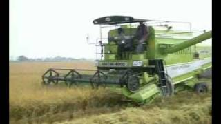 KARTAR COMBINE HARVESTERS::-Rice harvesting by India