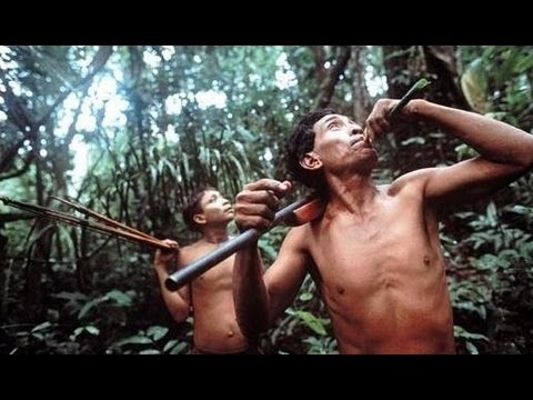 Nomads of the Rainforest PBS NOVA 1984