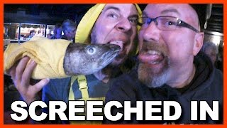 Newfoundland Screech-In and Kissing the Cod Ceremony