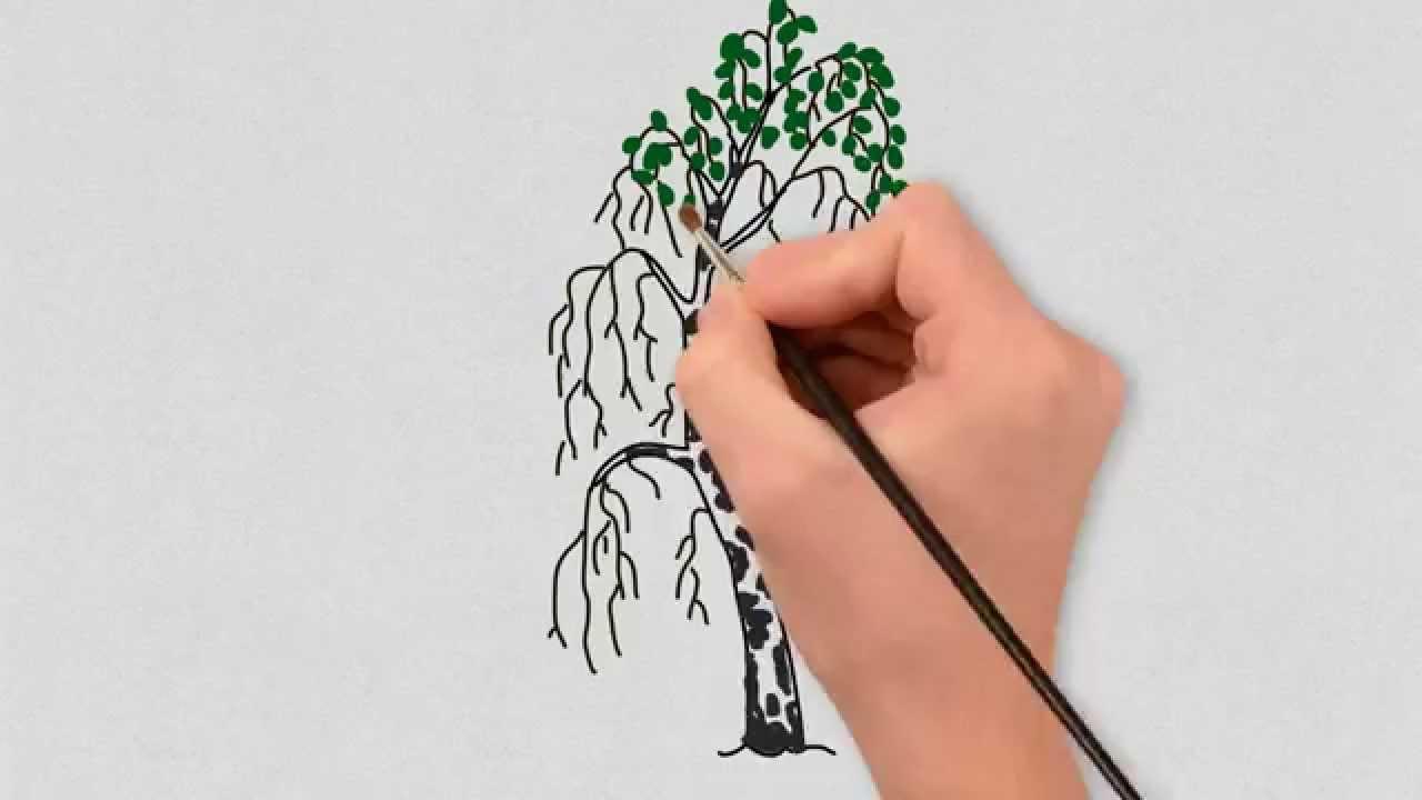 как нарисовать берёзу картинки