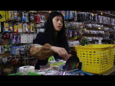 Ying y Yang (documental)