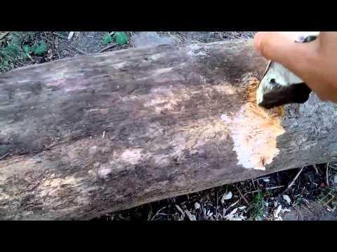 Балаклея, кремневые орудия труда