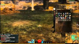 Guild Wars 2- Kobieca dominacja nad samcem Alfa #1