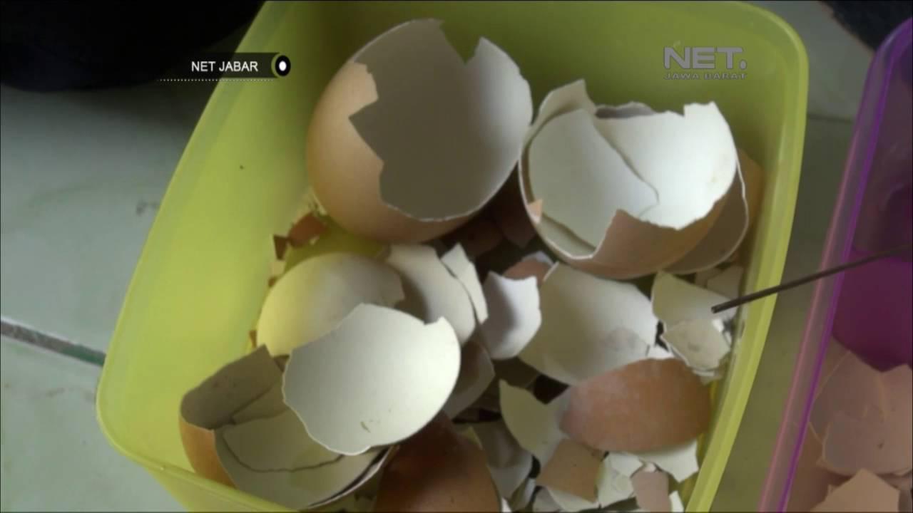 Net Jabar Kaligrafi Cangkang Telur