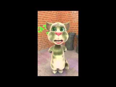 El Gato Tom   Cantando Baru Acelera Dembow 2013