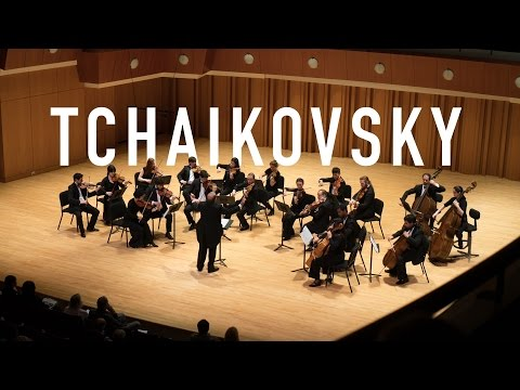 Serenade for Strings - Tchaikovsky.