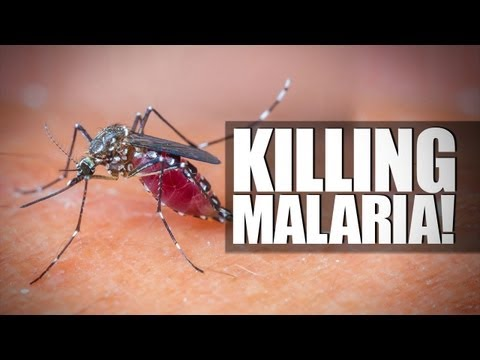 MALARIA VACCINE IS A THING!