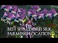 Best Shal'Dorei Silk Farming Spot WoW Legion Goldfarming