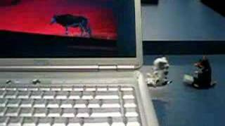 this little usb dog does your sit-ups for you!!! USB Crunching Dog ...
