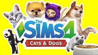 The Sims 4 Cats and Dogs | CREATE A PET!!!  [ First look & Review ]