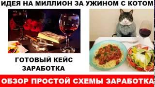Идея на миллион за ужином с Котом  Обзор рабочей схемы заработка с примером