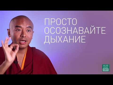 Как медитировать где угодно когда угодно — Мингьюр Ринпоче