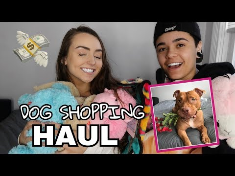 $500 DOG SHOPPING HAUL!!!