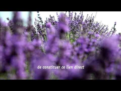 Farfalla -- Cosmétique biologique certifiée et huiles essentielles naturelles.