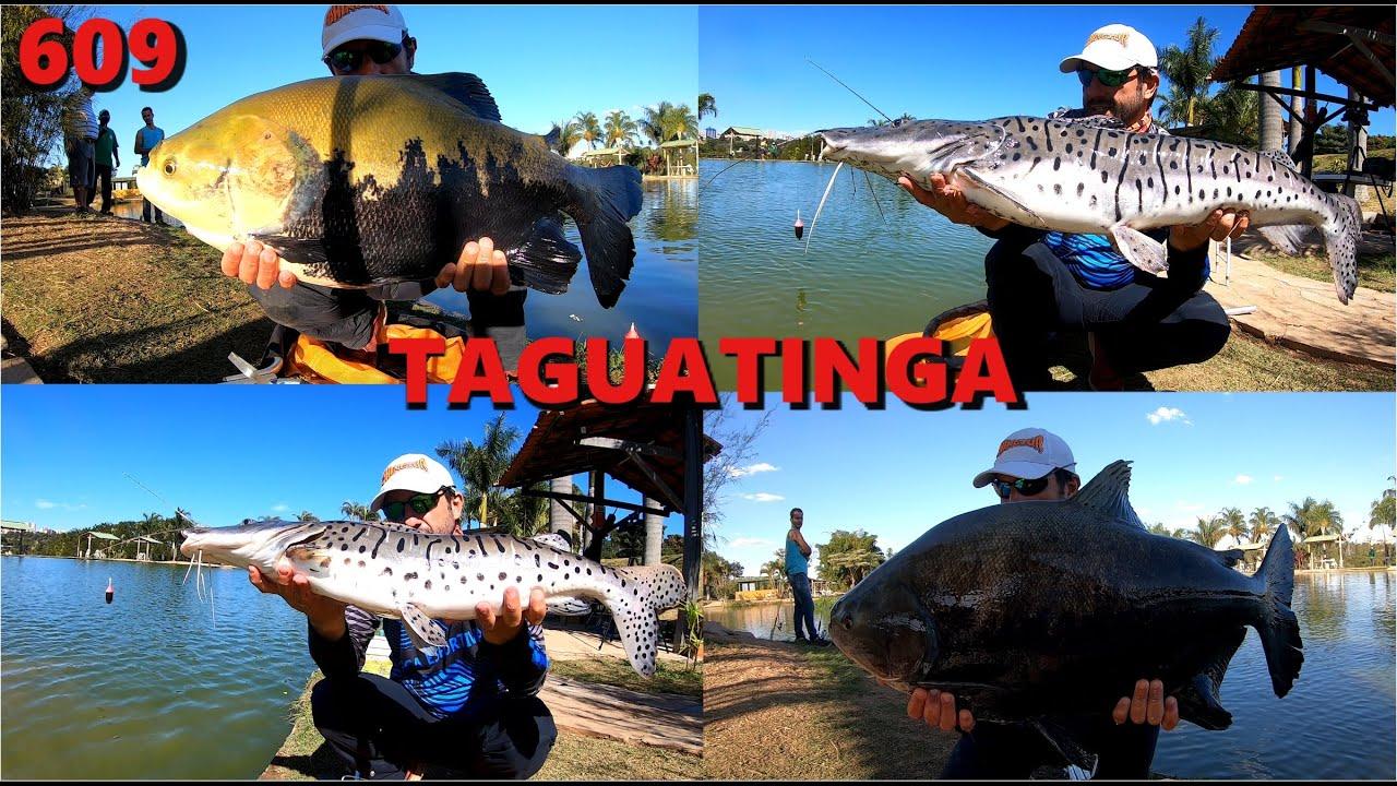 Pescaria de inverno no Pesque Pague Taguatinga - Fishingtur Pesca 609