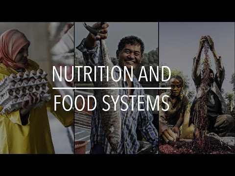 FAO Policy Series: Nutrition and Food Systems