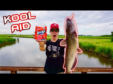 I Tested Using *KOOL AID* For CATFISH BAIT!!? (Surprising Result!)
