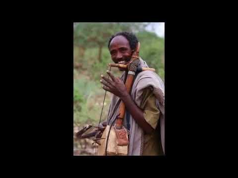 The best of Ethiopian cultural  Tizita   masinko