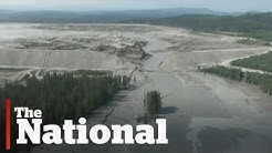 Mount Polley tailings pond spill report