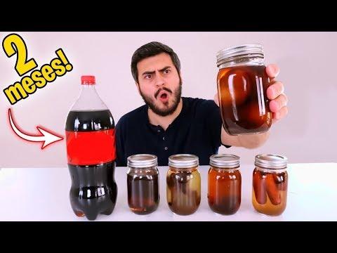 Deixando Coisas no Refrigerante por 2 Meses ( EXPERIMENTO )