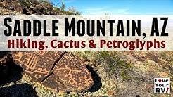 Morning Hike Saddle Mountain, AZ - Petroglyphs, Cactus and Sweeping Views
