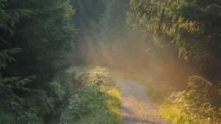 Folksong / Tautasdziesma (Gaismeņa Ausa)