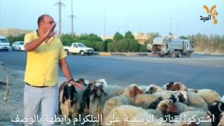 تحشيش العيد واقع حال لمن تشتري خروف/تحشيش محمد قاسم