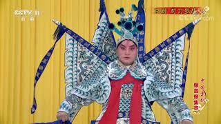 《中国京剧像音像集萃》 20191107 京剧《对刀步战》| CCTV戏曲