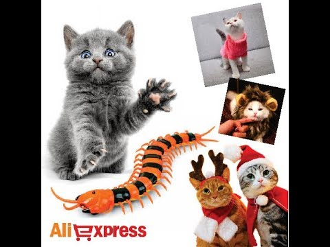 ALIEXPRESS PETS - MIMOS, BRINQUEDO, TRANSPORTE, ROUPAS PARA SEU PET