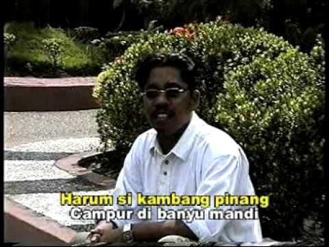 ADAT KAWIN - Nanang Irwan - Dangdut Banjar Kalimantan Selatan