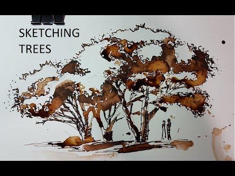 скетчинг группы деревьев  - перо и чернила
